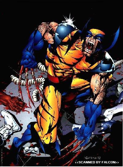 Wolverine06